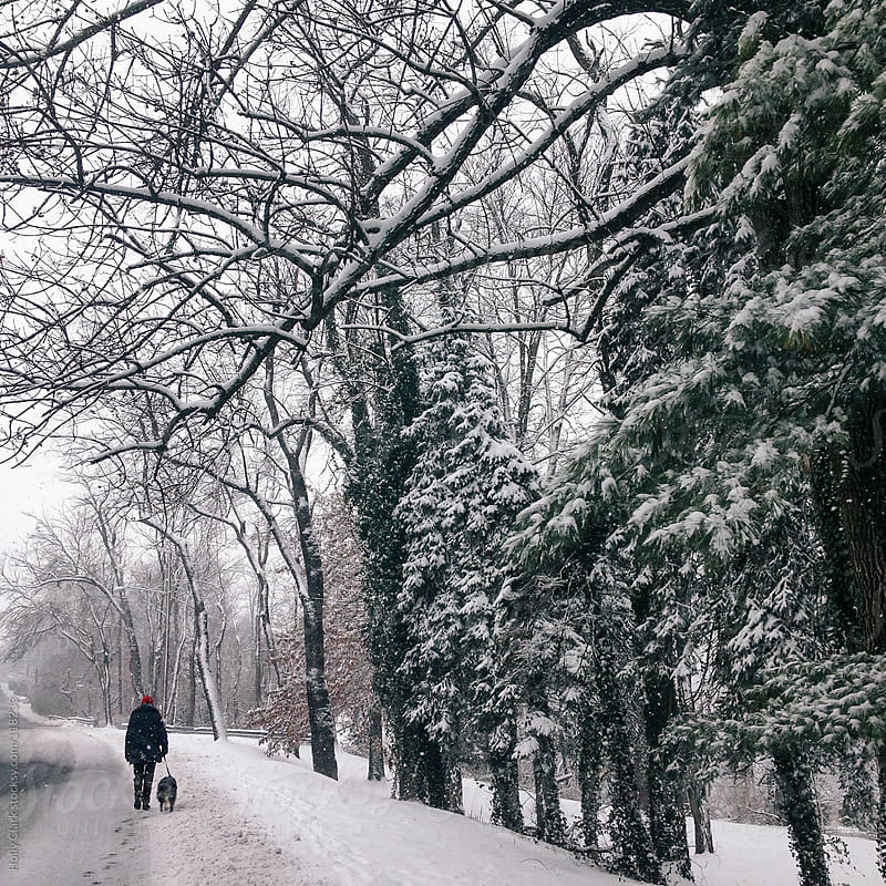 A woman walks her dog down the street on a snowy afternoon. by Holly Clark for Stocksy United