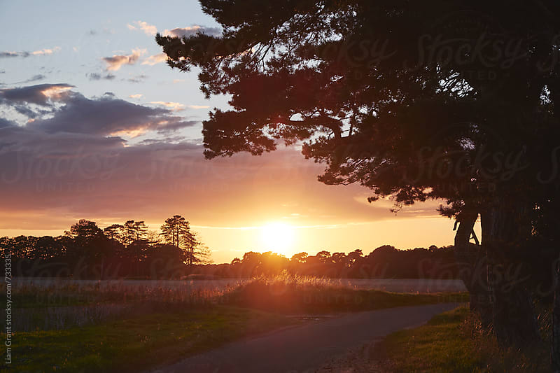 Sunset over a remote country road. Norfolk, UK. by Liam Grant for Stocksy United