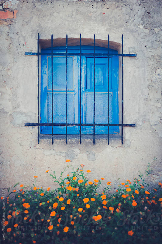 Blue window in a house with orange flowers by Javier Pardina for Stocksy United