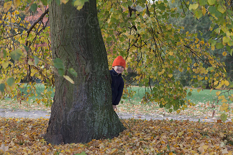 Toddler playing hide and seek behind a tree by Mima Foto for Stocksy United