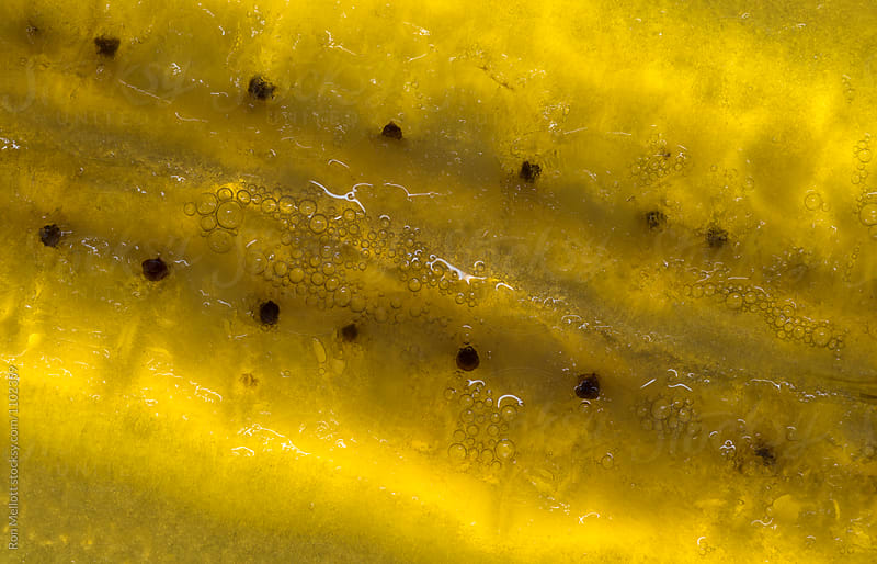 closeup macrophotograph of a slice of a yellow banana (Musa sp.) by Ron Mellott for Stocksy United