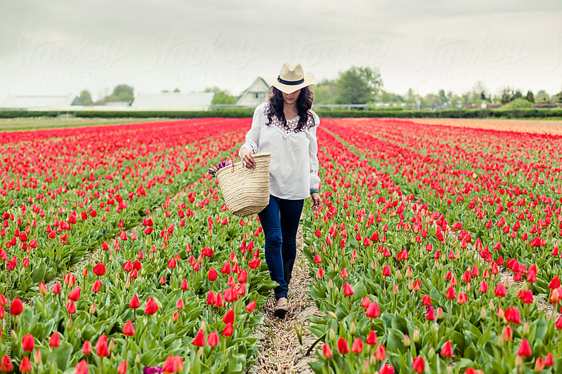 Woman with a straw basket walking in a field of red tulips by Cindy Prins for Stocksy United