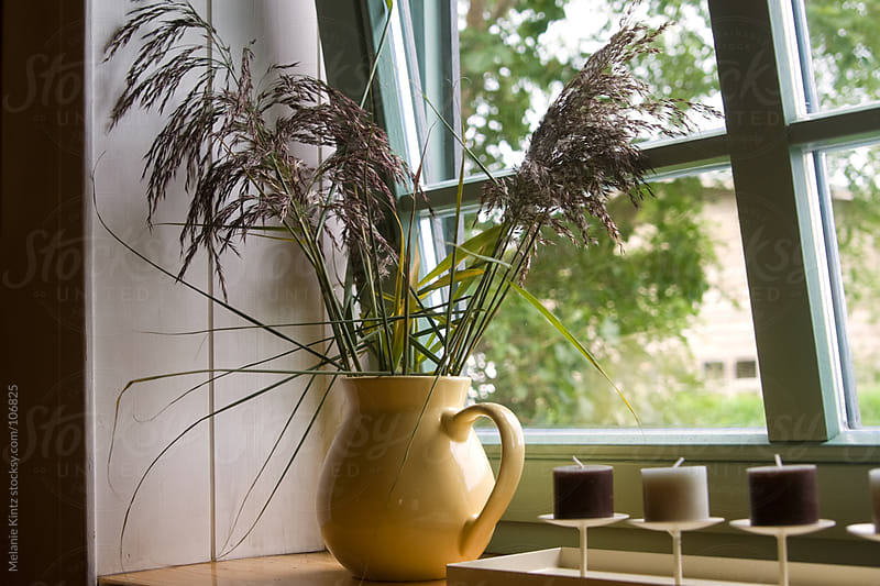 Vase with seagrass and candles in window by Melanie Kintz for Stocksy United