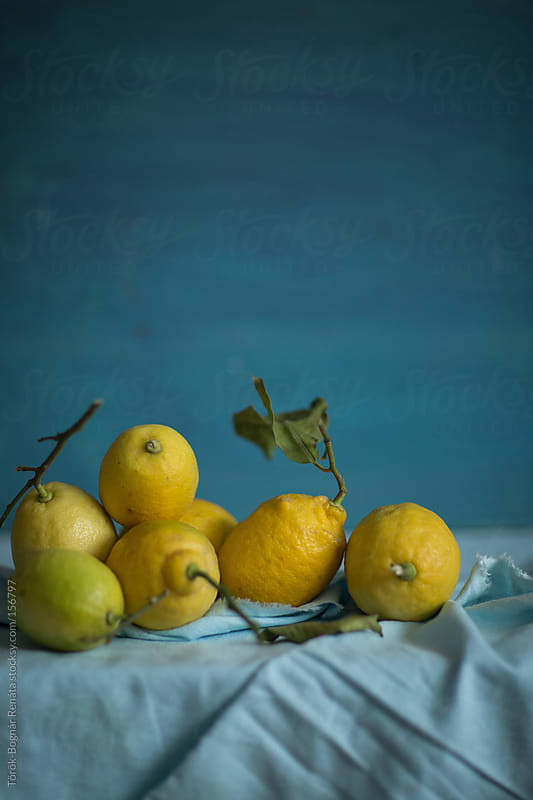 Lemons by Török-Bognár Renáta for Stocksy United