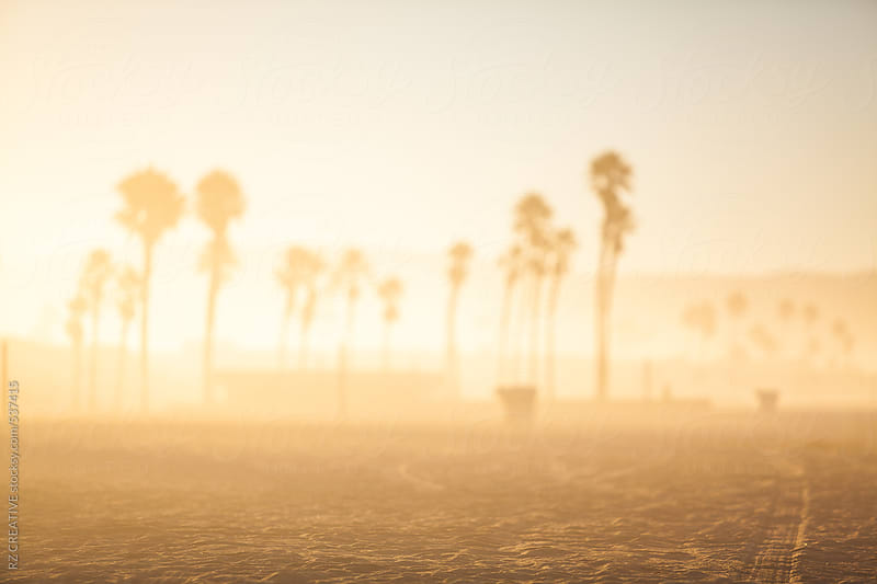 Shallow depth of field of the beach at sunrise. by RZ CREATIVE for Stocksy United