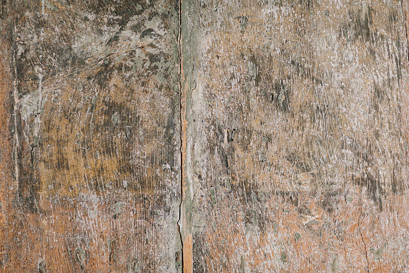Old cracked stained grungy wood texture by Amir Kaljikovic for Stocksy United