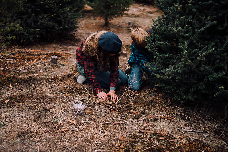 teens cutting down a Christmas tree by Léa Jones for Stocksy United