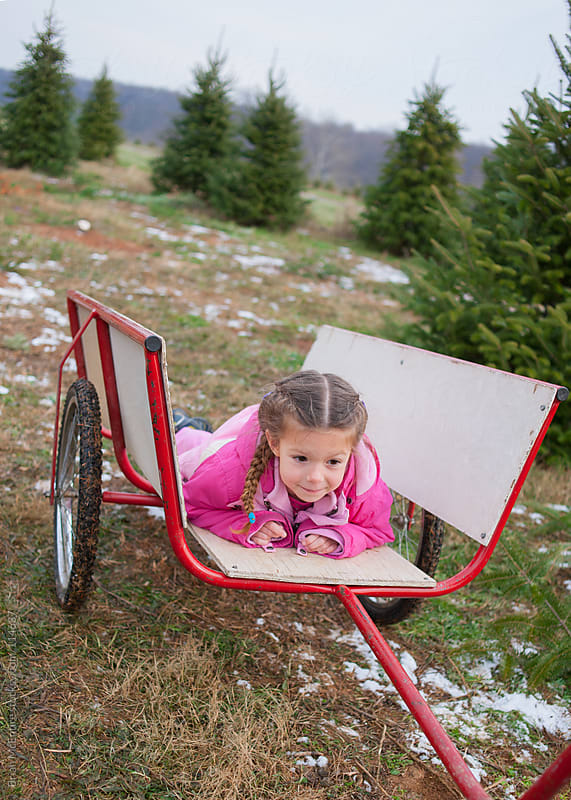 Christmas Tree Hunting: Tired Little Girl Gets A Ride by Brian McEntire for Stocksy United