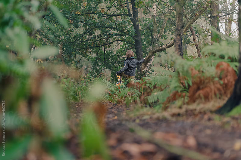 Hide and seek in the woods by Rebecca Spencer for Stocksy United