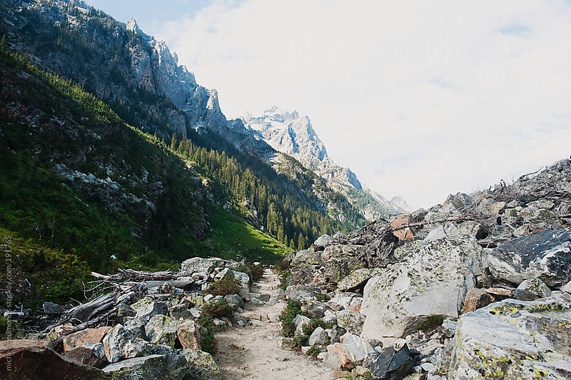 Mountain Trail in Grand Teton National Park by michelle edmonds for Stocksy United