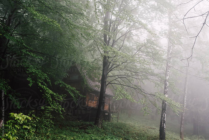 Wooden cabin in the misty forest by Boris Jovanovic for Stocksy United