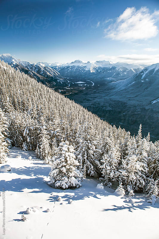 Sunny landscape of mountains in Alberta, Canada by Luca Pierro for Stocksy United