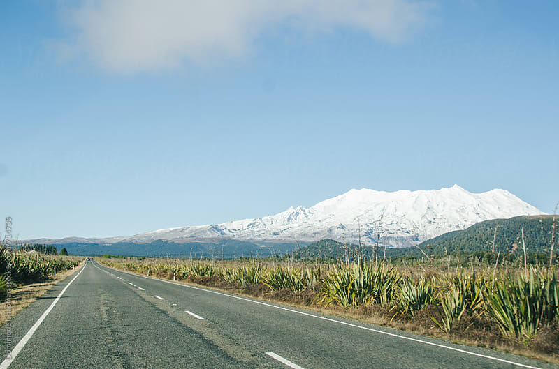 Road leading to Tongariro National Park by Dominique Chapman for Stocksy United