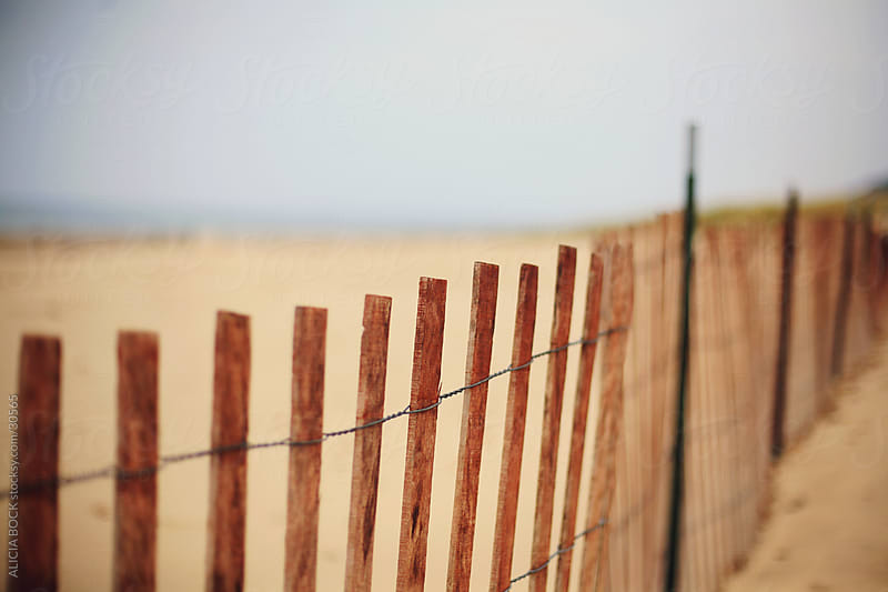 Beach Fence by ALICIA BOCK for Stocksy United