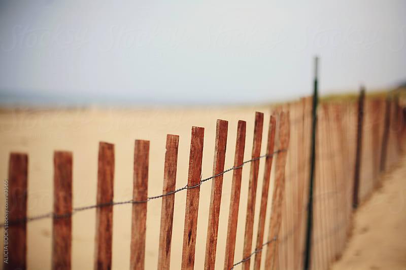 Beach Fence by ALICIA BOCK for Stocksy United
