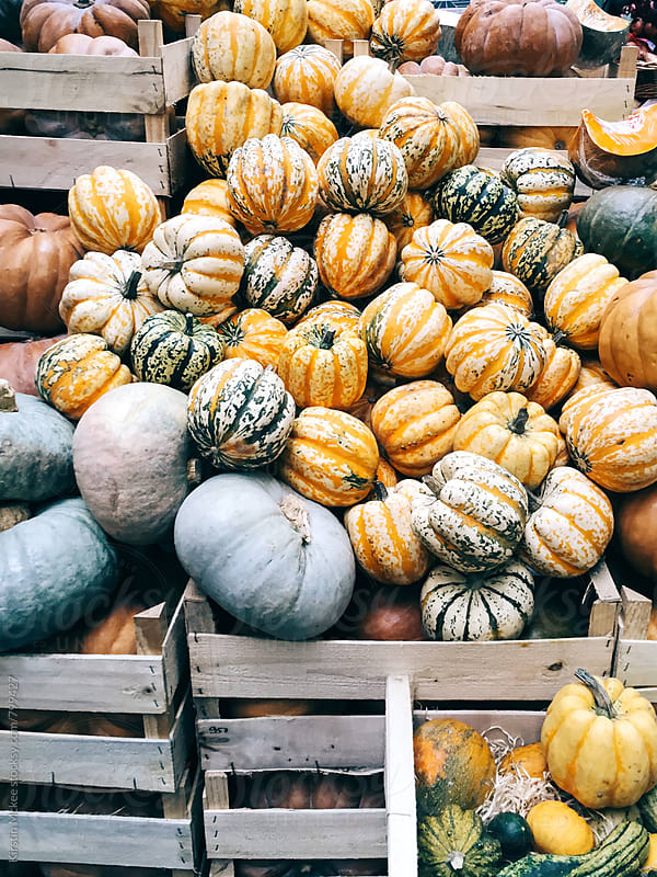 Pumpkins in crates at Borough Market, London by Kirstin Mckee for Stocksy United