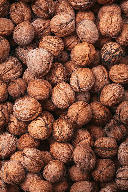 Walnuts closeup by Borislav Zhuykov for Stocksy United