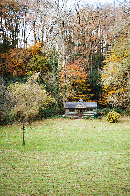 Rustic outbuilding surrounded by trees by Suzi Marshall for Stocksy United